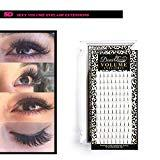 Offer for Demi Queen 5D Prefanned Volume Eyelashes Extension Handmade Rapid Cluster Lashes 0.07mm C Curl (12mm)