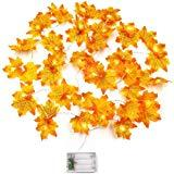 Offer for buways Golden Maple Leaves String Lights for Indoor Outdoor Decor (Maples Garland)