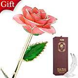 Offer for AGM 24k, Real Rose Flower Dipped in Gold with Stand Box, Gift for Mother's, Valentine's, Wedding Day, Home Deco(Pink)