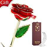 Offer for AGM 24k Gold Rose, Real Rose Flower Dipped in Gold with Stand in Gift Box, Gift for Mother's Day, Valentine's Day, Wedding Day, Home Decor(Red)
