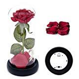 Offer for Beauty and The Beast Rose Kit, Red Silk Rose and Led Light with Fallen Petals in Glass Dome on Black Wooden Base for Home Decor Holiday Party Wedding Anniversary