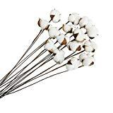 Offer for Gracebuy 15 Pack of 1 Boll Per Stem 24 inch Natural White Cotton Stems Rustic Farmhouse Decoration Flowers