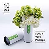 Offer for SNAIL GARDEN 2 Pack Artificial Hydrangea 12 Heads Fake Flowers with Special Vase Package for Best Arranging for Living Home,Office,Halloween Party and Wedding Decoration Thanksgiving (White/Green)