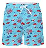 Offer for uideazone Men Beach Pool Theme Bathing Shorts Starfish and Seashells Beach Shorts Sport Basketball Shorts Summer Water Sport Swimsuit