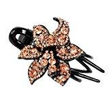 Offer for LANGMAN 2020 New Jewelry Crystal Hair Clips Hairpins- for Hair Clip Beauty Tools (D)